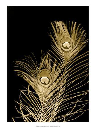 Plumes d'Or II