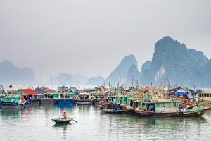 Colorful fishing boats in the harbor at Cai Rong, Quang Ninh Province, Vietnam by Jason Langley