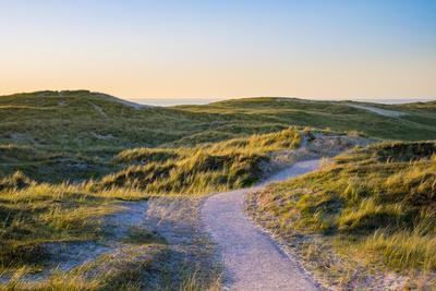 Netherlands, North Holland, Julianadorp. Walking path through the dunes at sunset.