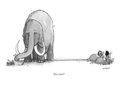 """""""Now what?"""" - New Yorker Cartoon"""