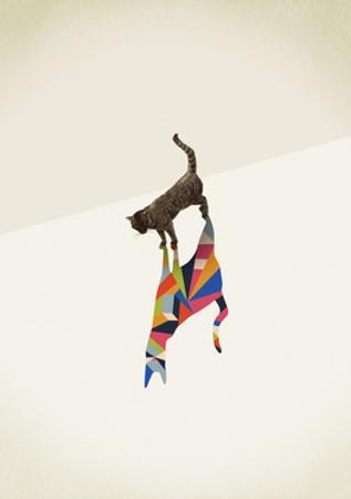 Cat 2 by Jason Ratliff