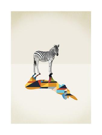 Zebra - Walking Shadows