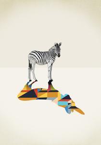 Zebra - Walking Shadows by Jason Ratliff