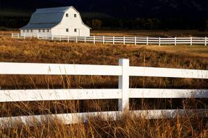 White Bitterroot Barn by Jason Savage