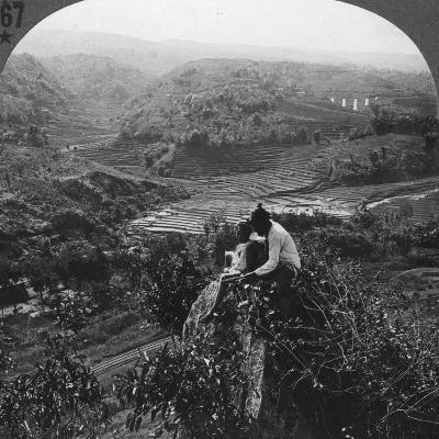 Java, Indonesia, C1900s--Photographic Print