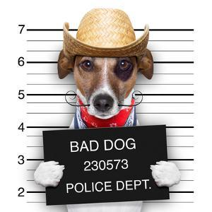 Bad Mexican Dog by Javier Brosch