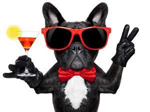 Cocktail Party Dog by Javier Brosch