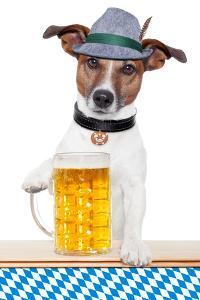 Dog Oktoberfest by Javier Brosch