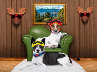 Love Couple Sofa Dogs by Javier Brosch