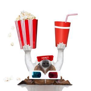 Movie Cinema Dog by Javier Brosch
