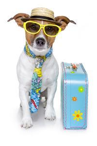 Tourist Dog With A Hat A Tie And A Case by Javier Brosch