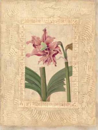 Estudio de Flores II