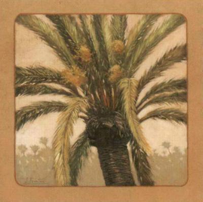 Palmtree IV