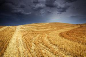 A Summer Thunderstorm Approaches At Sunset In The Palouse Region Of Washington State Near Colfax by Jay Goodrich