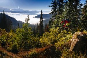 Mountain Biker Descends The Fuzzy Bunny Trail On Teton Pass Near Wilson, Wyoming by Jay Goodrich