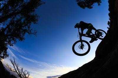 Mountain Biker Rolls Downhill Through The Pinyon Pines Near Carbondale Colorado