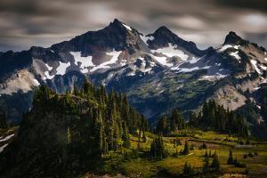 Paradise Area, Mount Rainier National Park, Washington State, USA by Jay Goodrich