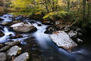 Rushing Water Cascading Down One Of Many Beautiful Streams In The Great Smoky Mts NP, Tennessee by Jay Goodrich