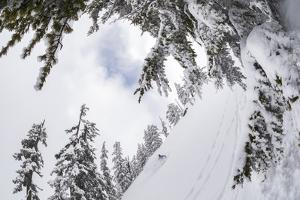 Skiing A Powder Haven, Winter Whiteout In Backcountry Near Mt Baker Ski Area In Washington State by Jay Goodrich