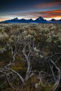 Sunset Over Sage In Grand Teton National Park, Wyoming by Jay Goodrich