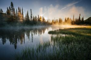 The Sun Rises Through The Early Morning Mist On A Pond In Mount Rainier National Park by Jay Goodrich