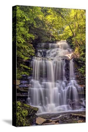 Pennsylvania, Benton, Ricketts Glen State Park. Ganoga Falls Cascade