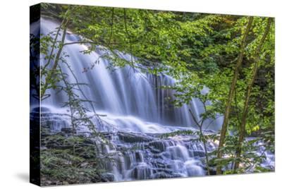 Pennsylvania, Benton, Ricketts Glen State Park. Mohawk Falls Cascade