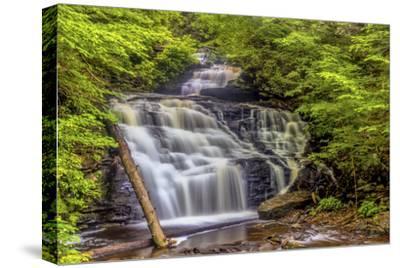 Pennsylvania, Benton, Ricketts Glen State Park. Mohican Falls Cascade