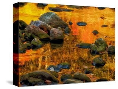 Pond, Davis, West Virginia, USA