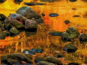 Pond, Davis, West Virginia, USA by Jay O'brien