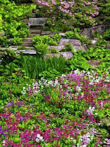Quarry Garden, Wilmington, Delaware, USA, Deleware by Jay O'brien