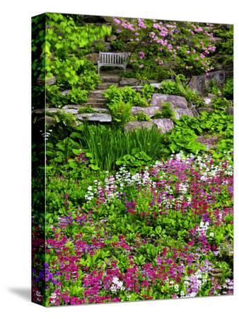 Quarry Garden, Wilmington, Delaware, USA, Deleware