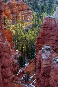 USA, Utah, Bryce Canyon National Park. Close-up of Hoodoos by Jay O'brien