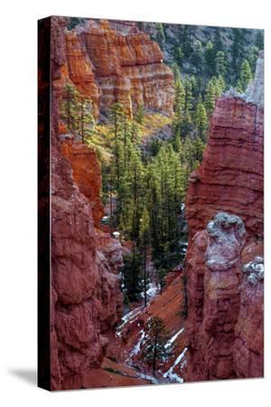 USA, Utah, Bryce Canyon National Park. Close-up of Hoodoos