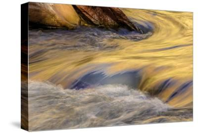 USA, Utah, Zion National Park. Autumn Reflections in Stream
