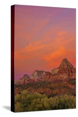 USA, Utah, Zion National Park. Mountain Landscape