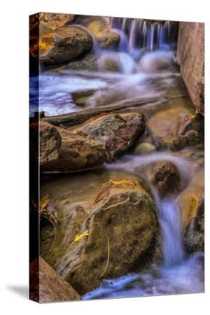 USA, Utah, Zion National Park. Rocks in Stream