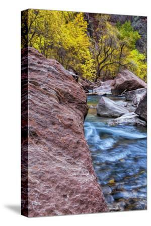 USA, Utah, Zion National Park. Stream in Autumn Landscape