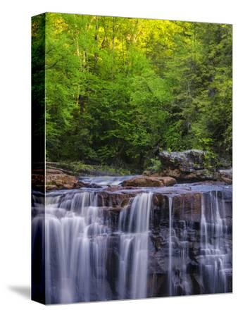 USA, West Virginia, Davis, Blackwater Falls. Scenic of the falls.