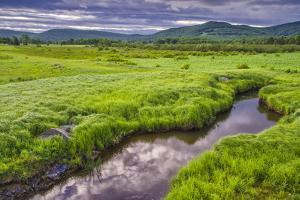 USA, West Virginia, Davis. Landscape of the Canaan Valley. by Jay O'brien
