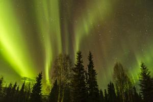 Alaska, Fairbanks. Northern Lights Patterns and Colors by Jaynes Gallery