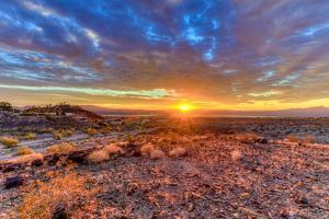 Arizona, Lake Havasu City. Sunset on Desert by Jaynes Gallery