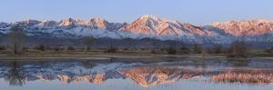 California, Bishop. Sierra Crest Reflects in Farmer's Pond at Sunrise by Jaynes Gallery