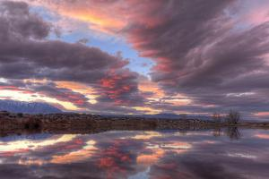 California, Owens Valley. Buckley Ponds at Sunset by Jaynes Gallery