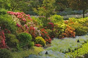 Canada, British Columbia, Vancouver Island. Butchart Gardens by Jaynes Gallery