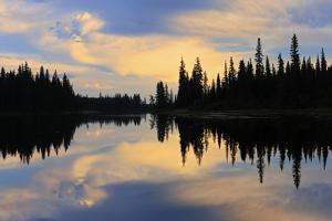 Canada, Manitoba, Pisew Falls Provincial Park. Forest reflected in Grass River. by Jaynes Gallery