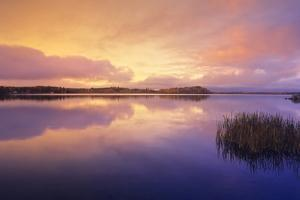 Canada, Manitoba, Whiteshell Provincial Park. Reflection on White Lake at dawn. by Jaynes Gallery