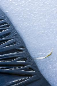Canada, Quebec, Mount St-Bruno Conservation Park. Close-Up of Lakeshore Ice by Jaynes Gallery