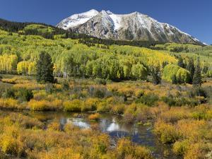 Colorado, East Beckwith Mountain. Composite of Mountain and Forest by Jaynes Gallery