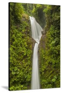 Costa Rica, Monteverde Cloud Forest Biological Reserve. La Paz Waterfall Scenic by Jaynes Gallery